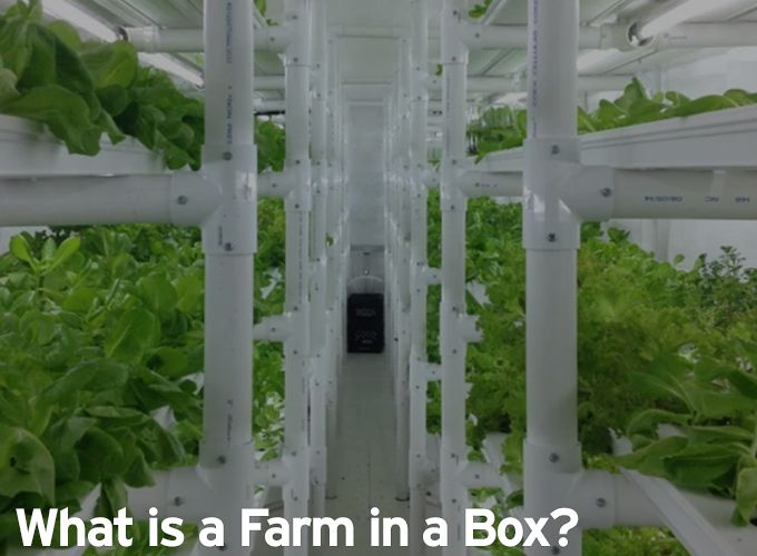 What is a Farm in a Box?