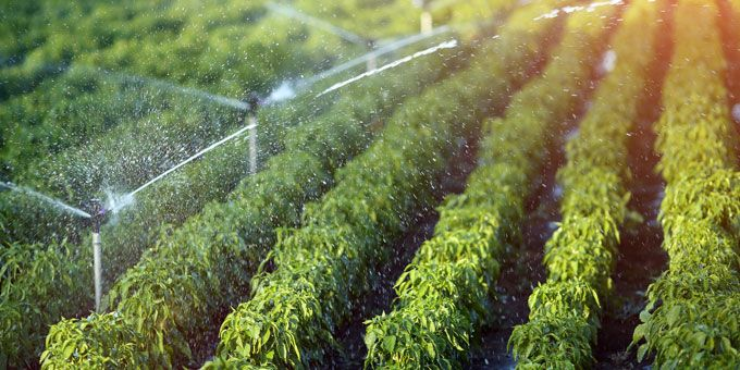 Advancements in Remote Control Technologies in Irrigation Systems