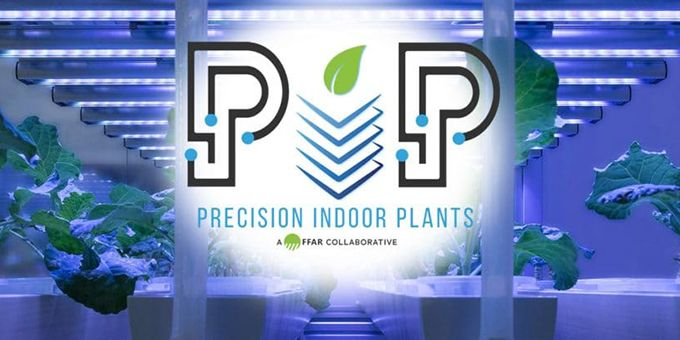 First-of-its-Kind Consortium Develops Crops Intended for Indoor Agriculture