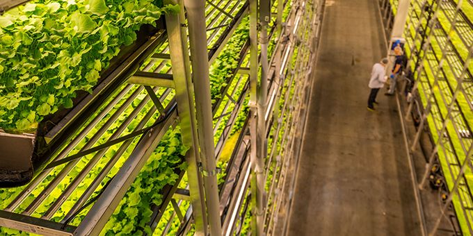 AeroFarms Partners To Launch First Vertical Farming Program Addressing Food Deserts, Inequity with Food Access & Education