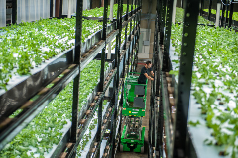 Hydroponics Articles Stories Amp News Agritechtomorrow
